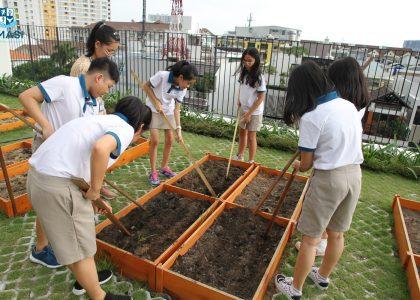 11-Garden (2)