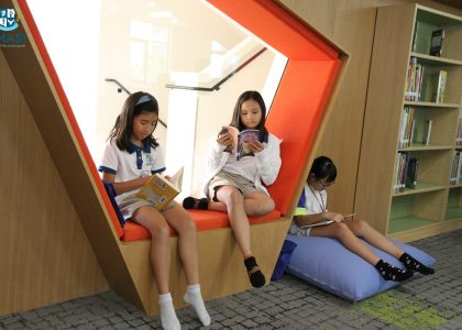 3-Library (5)