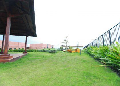 Rooftop-Garden-2