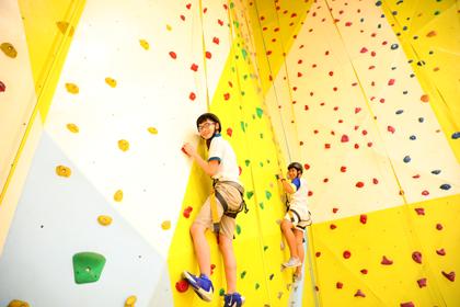 Climbing-wall-vp-2