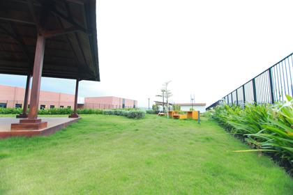 Rooftop-garden-NL-3